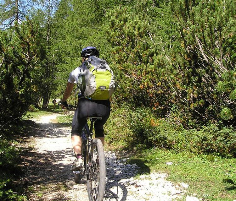 https://www.pugliaescursioni.com/wp-content/uploads/2020/02/bike-tour-750x640.jpg